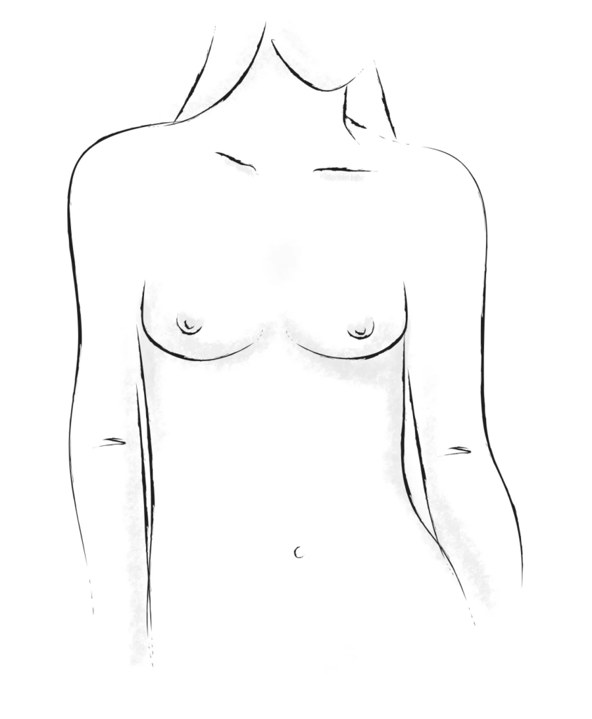 Athletic breasts shape