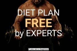 Bodybuilding Diet Plan for Beginners Gain Weight - Image bodybuilder