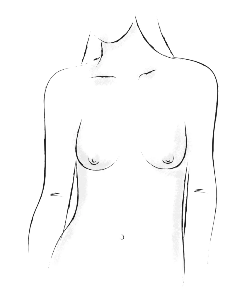 Slender breasts shape