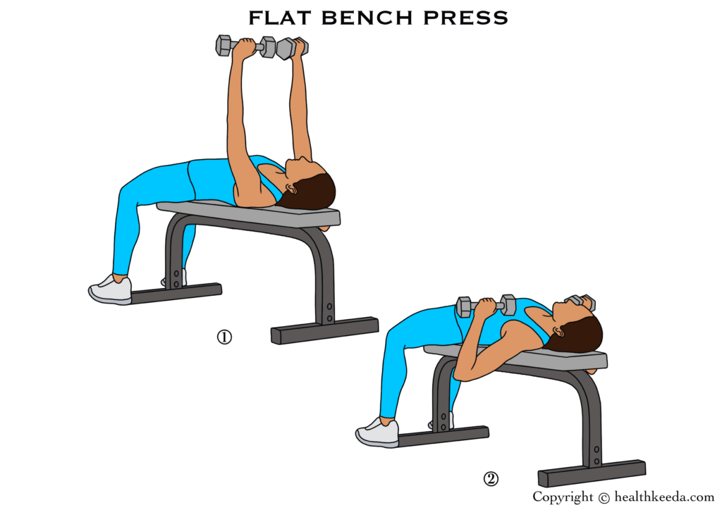 flat bench press illustration- breast tightening workouts