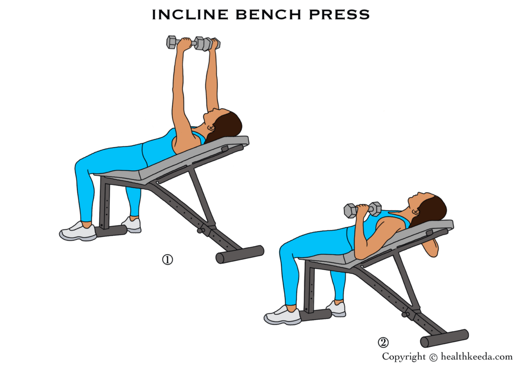 Incline bench press illustration- breast tightening workouts